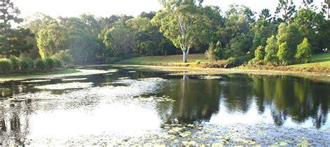 Gold Coast Botanical Gardens Gold Coast Botanic Gardens Free Things To Do Gold Coast Experience Oz