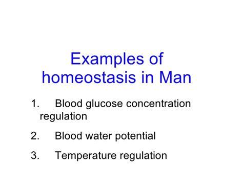 chapter 12 homeostasis lesson 2 exles of homeostasis