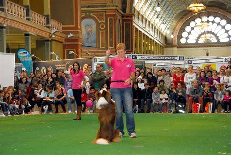 puppy pleasers rescue melbourne show 2015 melbourne