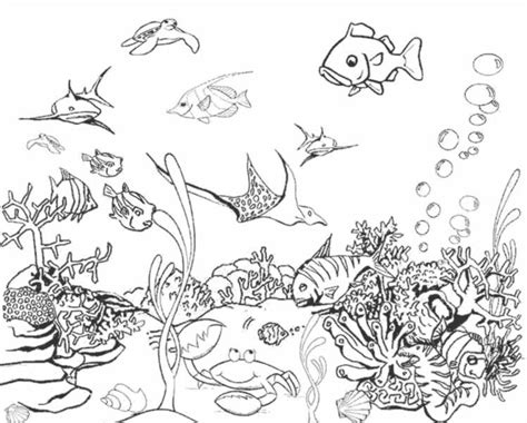 free fish and ocean life coloring pages