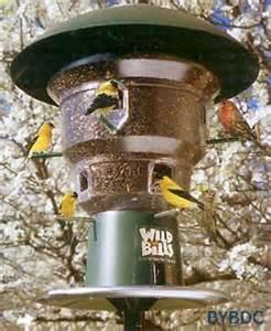 wild bills squirrel free electric bird feeder 8 port