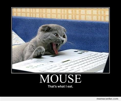 Mouse Memes - mouse by ben meme center