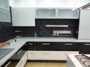 Interior Kitchen Cabinets Modular Kitchen Cabinet For New Kitchen Look My Kitchen