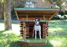 amazing dog houses for sale 1000 images about home for the holidays on pinterest raffle tickets texas homes and raise money