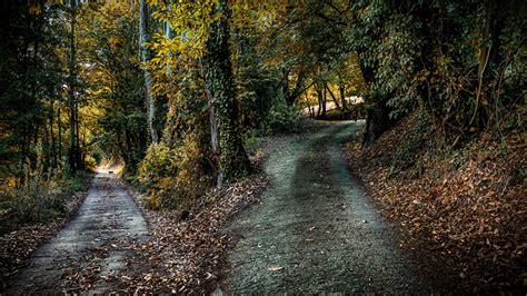 imagenes para pc naturaleza fondos de pantalla parque espa 241 a asturias senda naturaleza