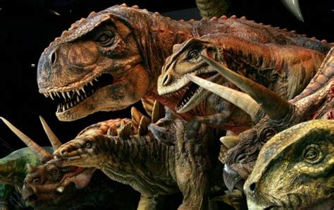 fossil forensics separating fact from in paleontology books dinosaur dna rebuilt from ancient eggs metro news