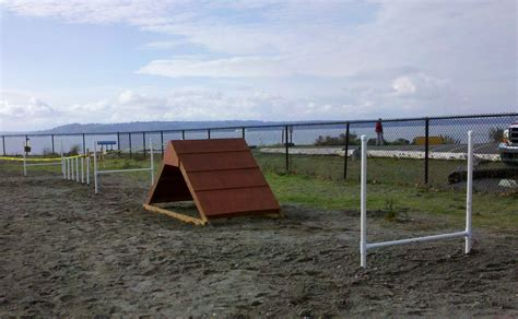 how to build a dog park in your backyard boy scouts build an agility course for edmonds off leash