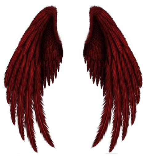 wings background wings png images free wings png