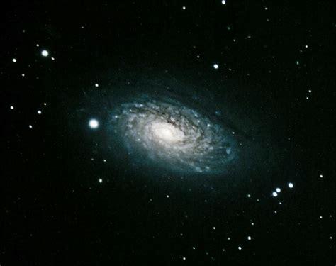 sunflower galaxy our celestial coast showcase of galaxies coastal review