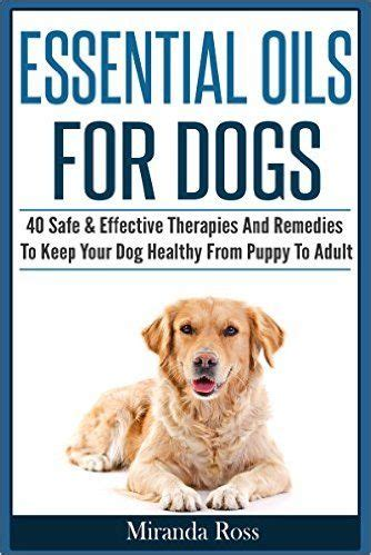 essential oils for calming dogs 1000 ideas about grooming supplies on grooming pet grooming and
