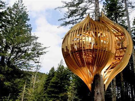 the ten top tree house top 10 unique tree house designs in the world