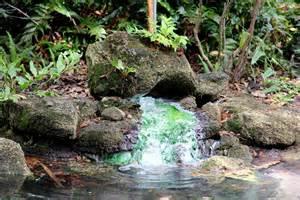 washington oaks gardens state park palm coast florida