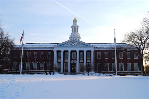 How Much Is A Harvard Mba by Why Greed Is Still Incubated At Harvard Business School