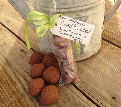 seed bombs saving the earth one flower at a time