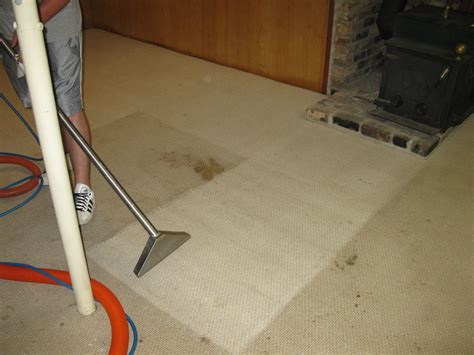 upholstery cleaning knoxville tn superior carpet cleaning rug cleaning oriental rugs