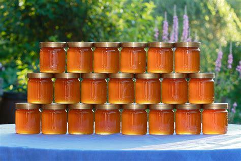 Welcher Honig Ist Am Gesündesten by Manuka Honig Ist Besser Als Jedes Antibiotikum Wusstest