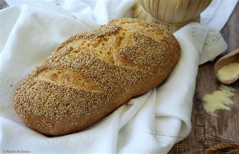 pane di casa siciliano pane siciliano con sesamo lievito madre o di anche
