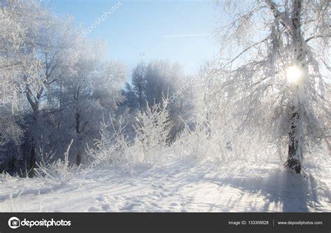 imagenes de invierno muy frio paisaje de invierno temporada de invierno nieve en el