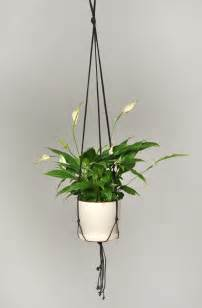 wall planters indoor ikea indoor hanging planters as always hanging basket
