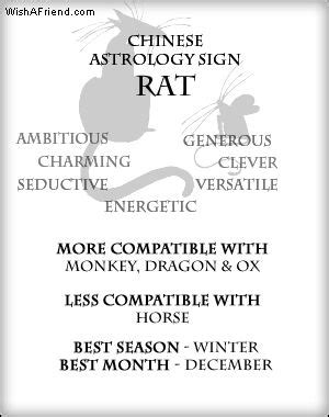 your chinese zodiac profile rat all about me rat