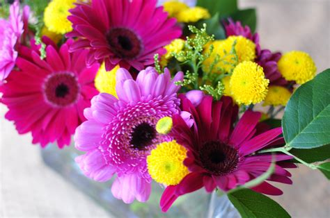 november flower flower arrangement november 7 2010 moisie darling