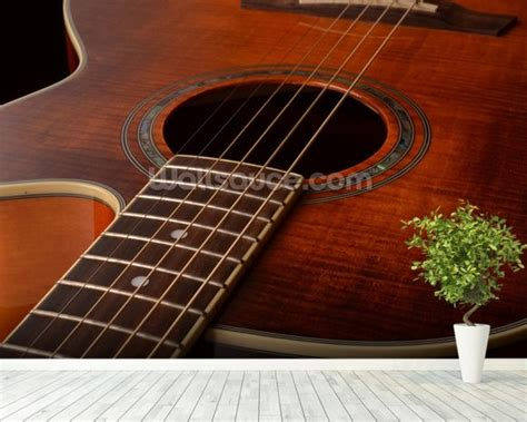 guitar wall murals acoustic guitar wallpaper wall mural wallsauce