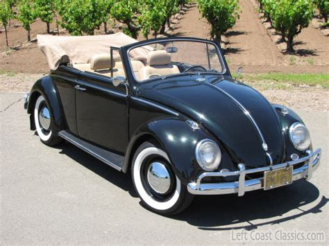 bmw volkswagen bug 1962 vw bug convertible for sale