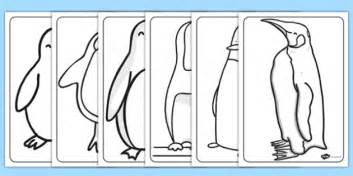 coloring pages for visually impaired penguin colouring sheets penguin colouring sheets colour