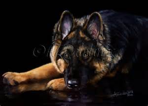 German shepherd dog original oil by anne zoutsos original painting