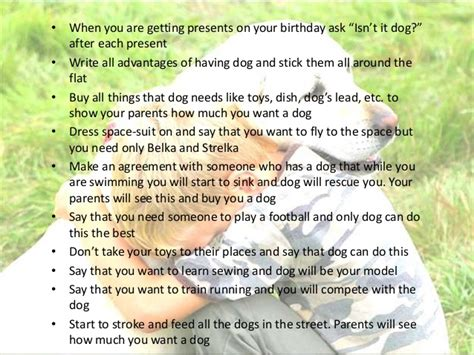 how to my pet how to persuade parents to buy a