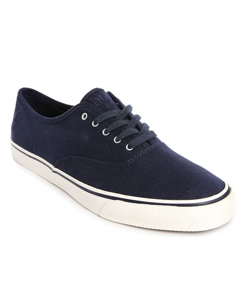polo shoes for polo ralph knotical ne navy canvas sneakers in blue