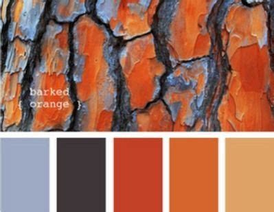what colors go with burnt orange blue burnt orange living room colors homedecor