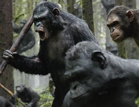 awn of the planet of the apes exclusive preview rise dawn of the planet of the apes