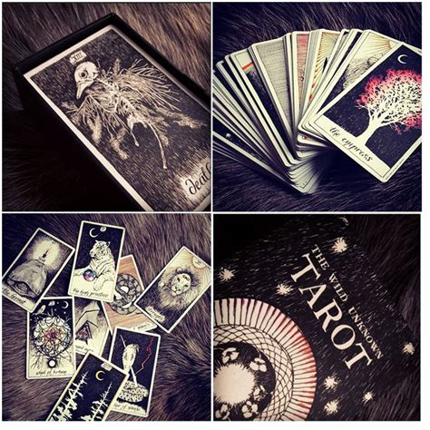 libro the wild unknown tarot 32 best tarot desk images on tarot cards tarot and tarot spreads