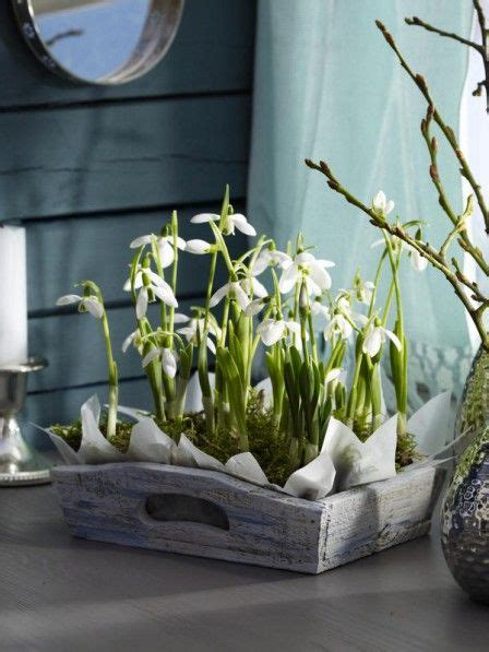 kleines tablett kleines tablett mit schneegl 246 ckchen flowers and gardens
