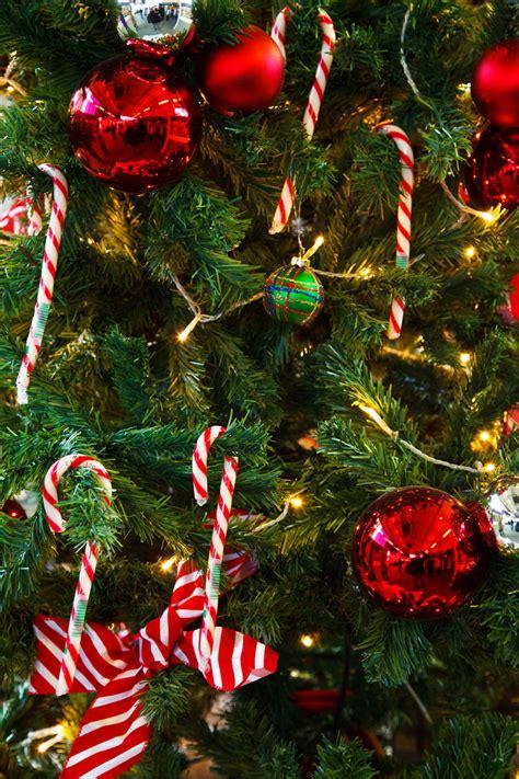 christmas tree detail free stock photo public domain