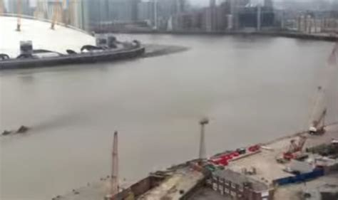 loch ness in thames loch ness monster spotted in thames in new footage uk