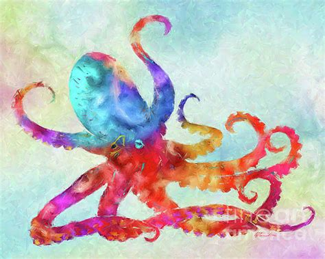 colorful octopus colorful octopus