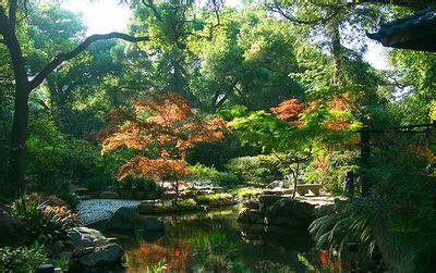 La Canada Botanical Gardens Descanso Gardens In La Ca 241 Ada Flintridge Light Up The 2013 Featured Hometown Pasadena