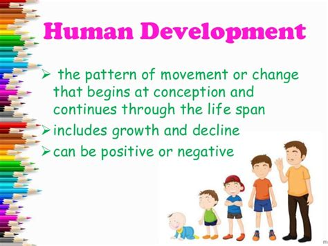 biography development definition human growth stages worksheet