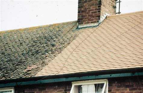 roof treatments flat roof waterproofing moss removal