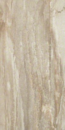 """Shaw Fossil Amber 12"""" x 24"""" Tile Flooring"""