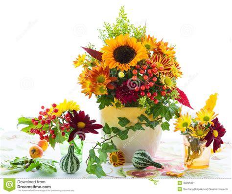 fiori d autunno fiori d autunno fotografia stock immagine 42091831