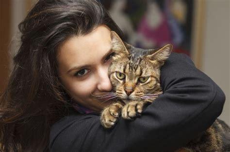 cadena para whatsapp de preguntas obligatorias gatos diez curiosidades sobre el comportamiento de los