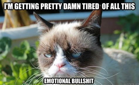 Tired Cat Meme - i m getting pretty damn tired of all this emotional