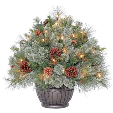 decorative pine trees enlarged image