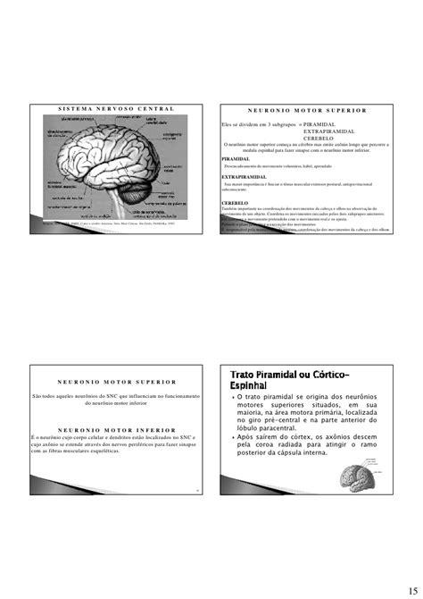 Aula 3 neuroanatomia parte 1