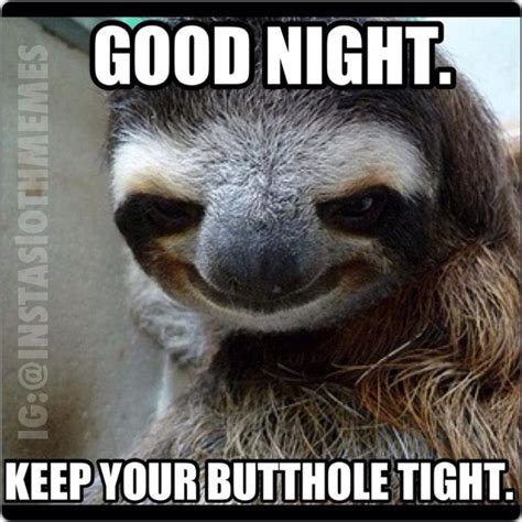 Nighty Night Meme - sloth nighty night sloths know your meme
