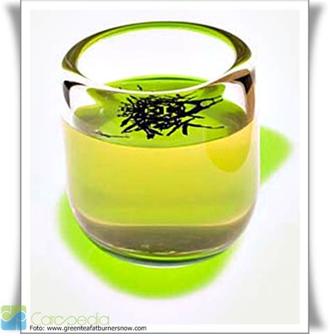 Teh Hijau Per Dus khasiat teh hijau kesehatan carapedia