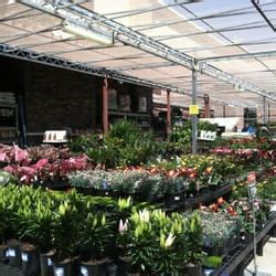 Garden Center Walmart Walmart Supercenter 15 Reviews Department Stores